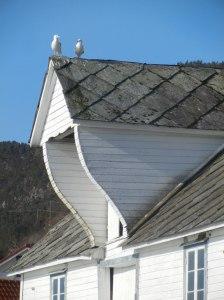 Siste måkenytt overleveres på brygga på Onarheim.