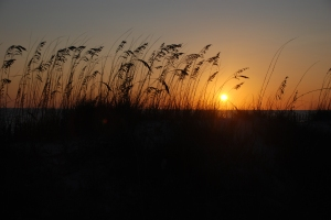 Kjenner jeg blir litt i overkant opptatt av solnedganger. Men det er bare så utrolig vakkert ...